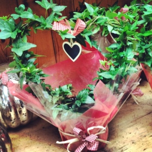 Ivy heart, Karen the Florist, Valentines Day